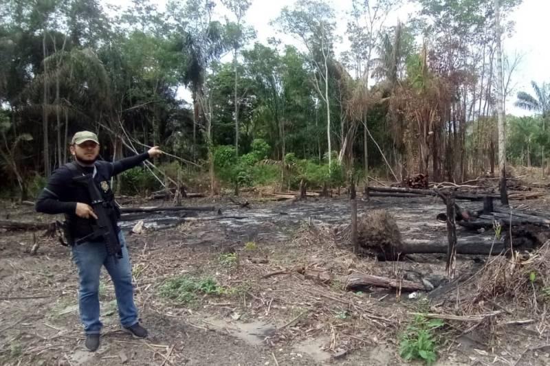 Operação Gelada prende homens acusados de queimadas em Marabá