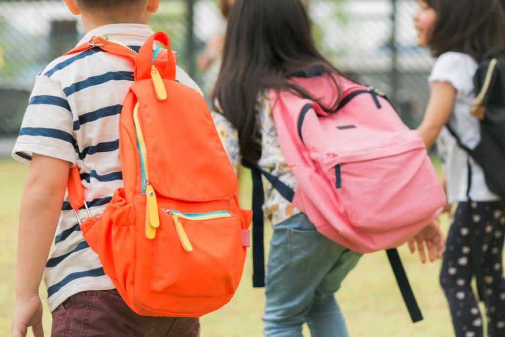 Decreto Estadual autoriza o retorno das aulas em 1º de Setembro