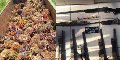 PC recupera carga de 7 toneladas de dendê em Tomé-Açu