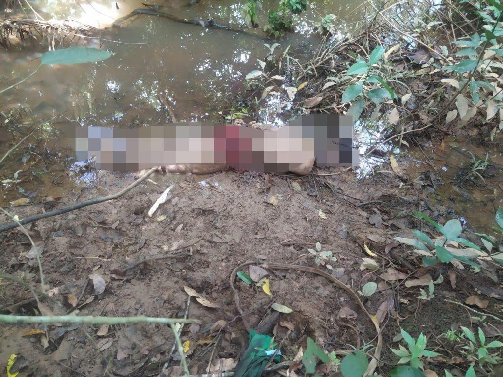 Corpo de homem é encontrado em área de mata, em Parauapebas